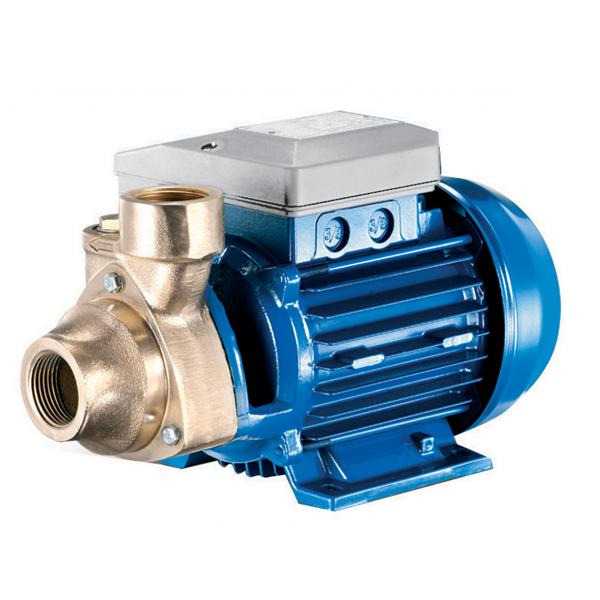 Foras PE Peripheral turbine pumps