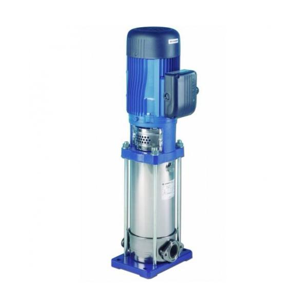 Lowara 5SV vertical multistage clean water pumps