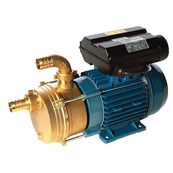 ENM industrial surface mount pump