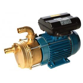 ENM industrial surface mount pump