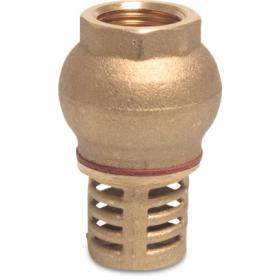 Brass Foot Valves / Filters